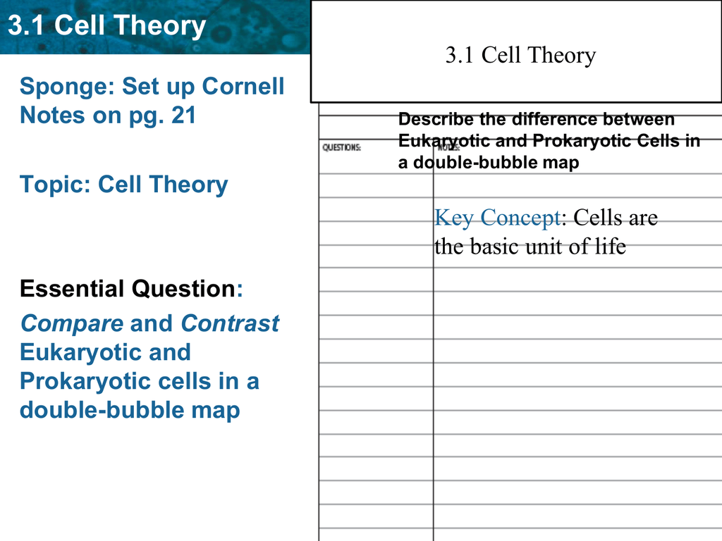 Cell Theory Concept Map.3 1 Cell Theory Cloudfront Net