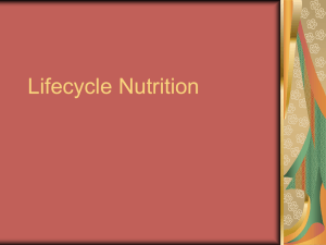 Lifecycle Nutrition - Central Washington University