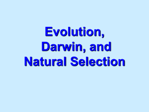 GDS_Genetics_and_Evolution