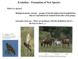 Evolution – Formation of New Species