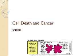Cell Death and Cancer