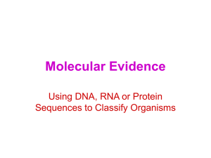 Using DNA, RNA or Protein Sequence to Classify Organisms