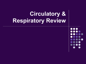 Circulatory & Respiratory Review Game