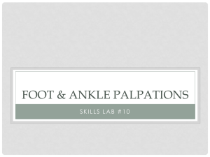 The Foot & ankle