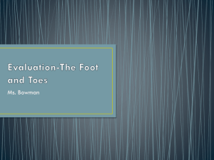 Evaluation-The Foot and Toes