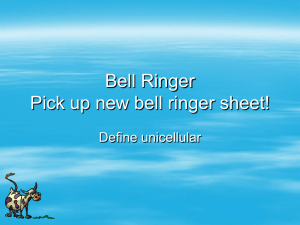 Bell Ringer Pick up new bell ringer sheet!