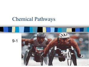 Chemical Pathways - Southgate Schools