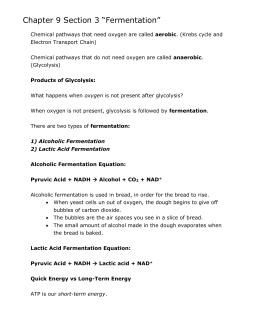 4 6 fermentation rh studylib net Study Guide Template Study Guide Clip Art