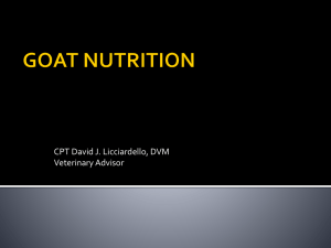 GoatNutrition-English
