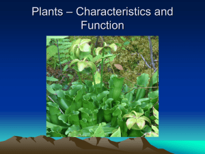 Plants – Characteristics and Function --