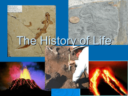 The History of Life - Grant County Schools