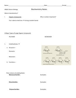 Macromolecule and Enzyme Review Worksheet