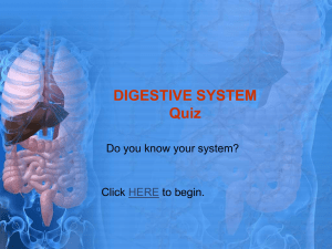 DIGESTIVE SYSTEM Quiz - THE DIGESTIVE SYSTEM