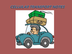 Cell Transport - Gainesville ISD