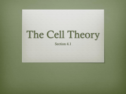 The Cell Theory - St. Paul School