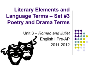 Romeo and Juliet Drama and Literary Terms