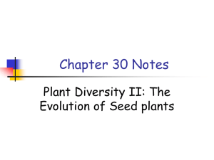 APchapter30notes