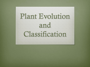 Plant Evolution and Classification