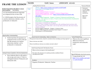 Lesson Frame 6th Grade