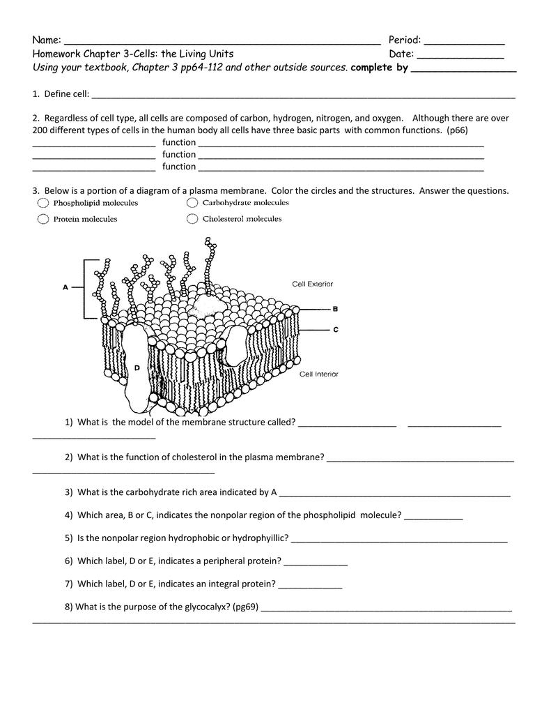 Ch  3 Worksheet