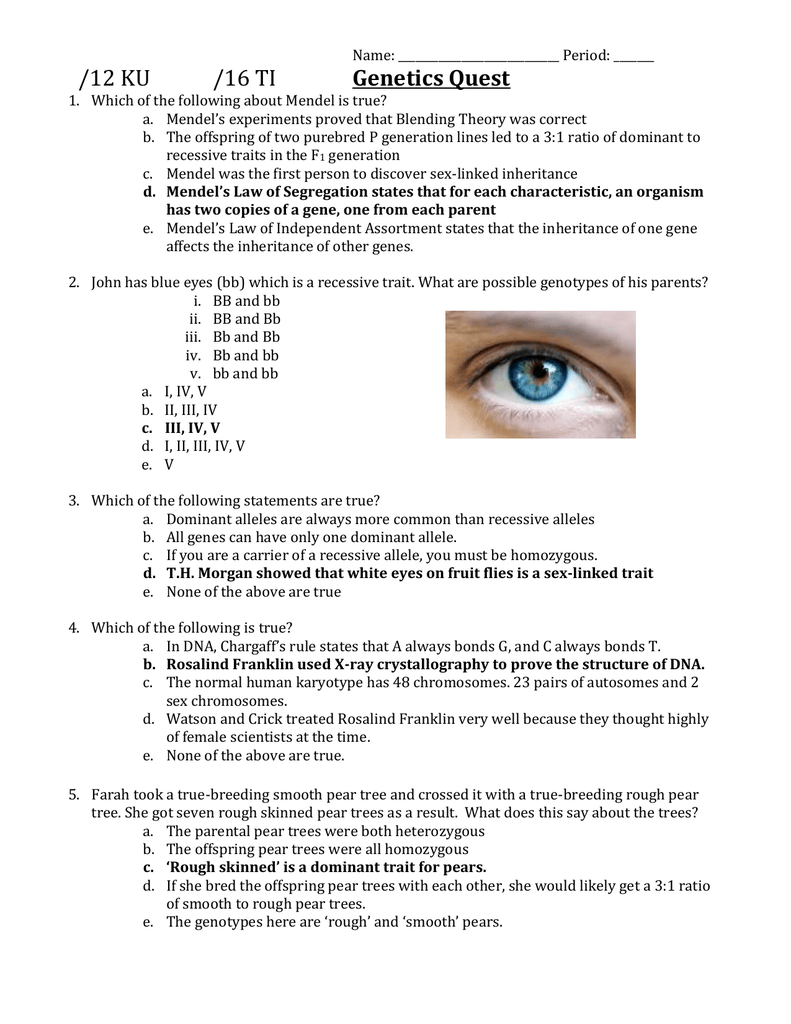 SBI3U Genetics Quest ANSWERS - OISE-IS-Chemistry
