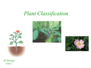 Plant Classification - Bremen High School District 228