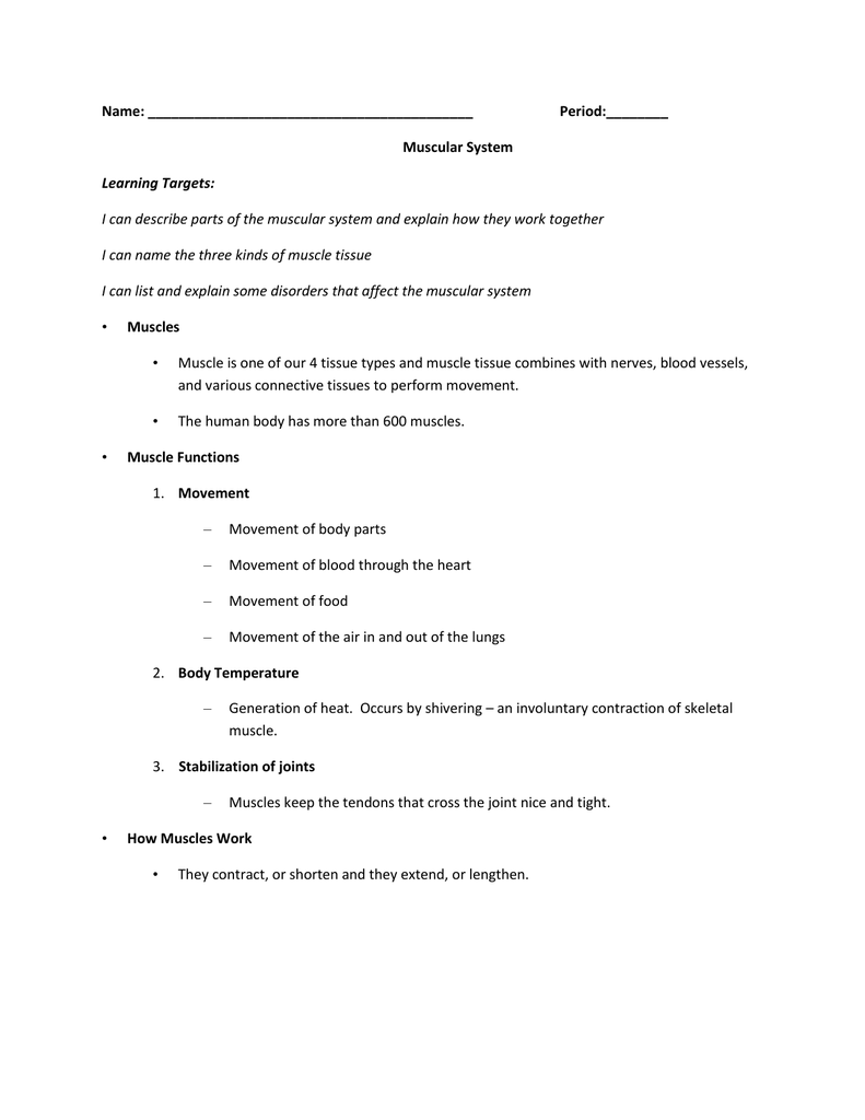 worksheet Connective Tissue Worksheet muscular system notes
