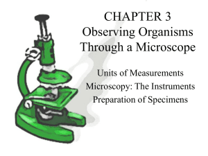 CHAPTER 3 Observing Organisms Through a Microscope