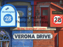 Romeo and Juliet Love Essay Joe Lauren Grant