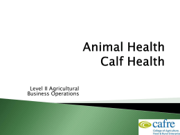Dairy Animal Health Week 3 – (Vet) Calf Health 4.79MB