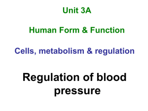 Blood pressure - Human Biology Study Space