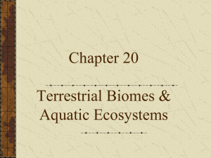 Terrestrial Biomes & Aquatic Ecosystems