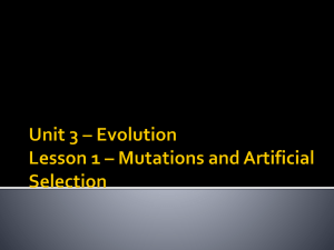 Unit 3 * Evolution Lesson 1 * Mutations and Artificial Selection