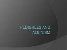 Pedigrees and Albanism