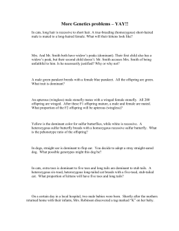 Worksheets Multiple Alleles Worksheet multiple alleles worksheet more genetics problems yay