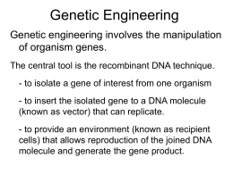 lecture notes-genetic engineering