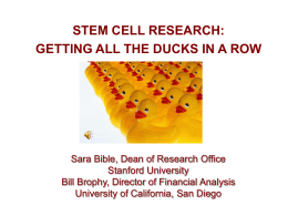 Stem Cell Research - Financial Analysis Office