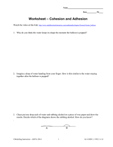 Worksheet – Cohesion and Adhesion