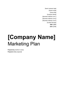 the marketing plan template