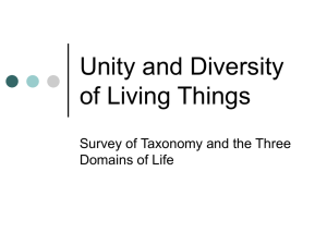 Unity and Diversity of Living Things Teaching