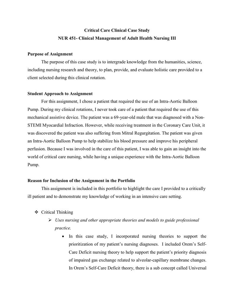 Park fellowship essay