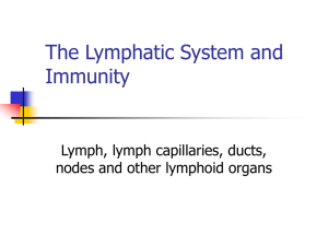 The Lymphatic System Immunity