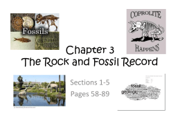 Chapter 3 Rock and Fossil Record sec 1