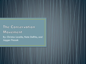 The Conservation Movement