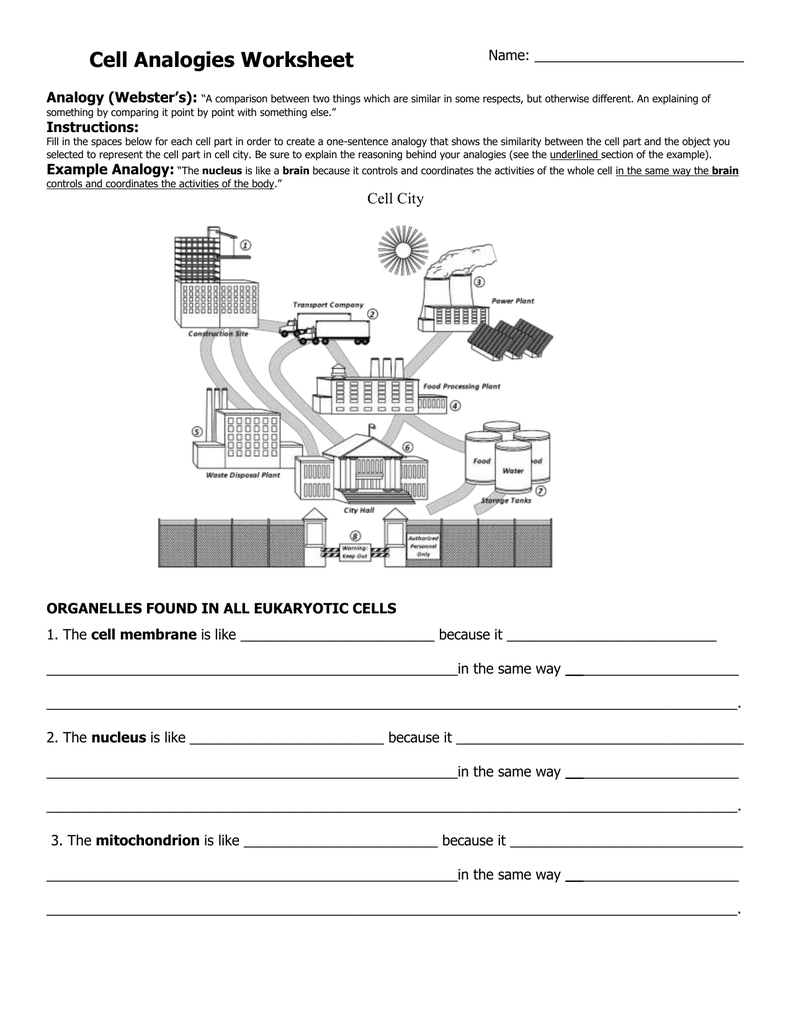 Cell organelle research worksheet answers