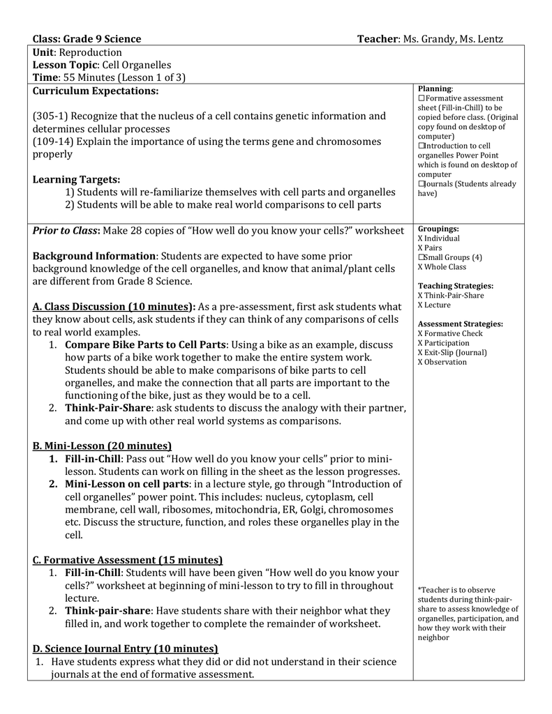 Worksheet Cell Processes Worksheet Grass Fedjp Worksheet Study Site