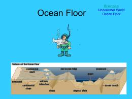 Ocean Floor - Atlanta Public Schools