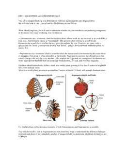notes on the plant kingdom Start studying biology notes unit 1 learn vocabulary, terms, and more with flashcards, games,  which division of the plant kingdom includes club mosses.