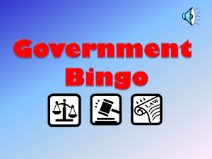 Government Bingo