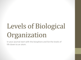 Levels of Biological Organization